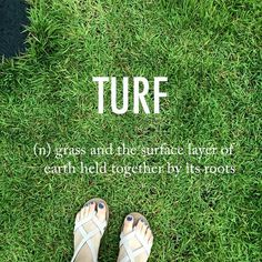 Turf |tərf| Old English origin of Germanic origin; related to Dutch turf and German Torf, from an Indo-European root shared by Sanskrit darbha 'tuft of grass.' . . #beautifulwords #wordoftheday #rooftop #window #GrassUnderMyToes #grass #greenery #summer #sandals #rain #refreshed #officegarden #green #smellofgrass #fromwhereistand