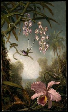Paintings from american painter Martin Johnson Heade // Orchids (orchidée, orquidea) and hummingbirds ( colibris, picaflor ) fr. Botanical Illustration, Botanical Prints, Martin Johnson Heade, Hudson River School, Arte Floral, Museum Of Fine Arts, Artist Canvas, Animal Paintings, Oil Paintings