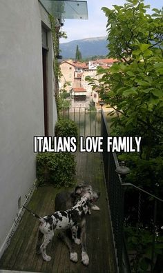 Italians LOVE family