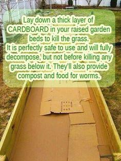 prepare raised garden bed - Google Search #flowerbedgardening