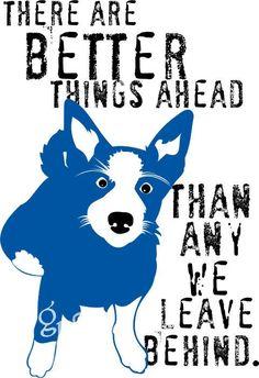 Australian Cattle Dog Border Collie Dog Art Print by Border Collie, Collie Dog, Foster Dog, Dog Poster, Dog Rules, Dog Memorial, Australian Cattle Dog, Whippet, The Ranch