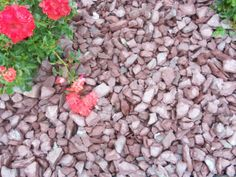 Red Decorative Gravel for Driveway, Pathway or Flower Beds. Decorative Gravel, Gravel Driveway, Flower Beds, Pathways, Landscape, Vegetables, Garden, Flowers, Red
