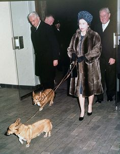 Little dogs became something of a fashion accessory in the mid-2000s, but here's the Queen at Liverpool Street Station in 1968 with two of her pet Corgis making knee-length fur work with ankle-height animal accessories