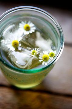 iced chamomile sun tea (photo by @Nicole Novembrino Novembrino Novembrino Franzen) カモミールティー。夏にも楽しめる、さわやかなハーブティーです。