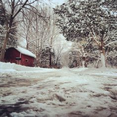 Tiffany Enos, Franklin  This picture was taken on Moyer's Gap Road in Pendleton County. #WHSVsnow