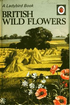 The Ladybird Book of British Wild Flowers Nature Series 536 Matt 1967 - I was given this book when I was 10 and started me on a lifelong journey of loving wild flowers. Spot Books, My Books, Vintage Book Covers, Vintage Books, Vintage Ads, Book Cover Art, Book Art, British Wild Flowers, Ladybird Books