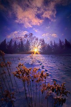 Purple sunset   nature     sunrise     sunset   #nature https://biopop.com/