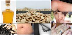 6 usos del aceite de almendras | Plantas