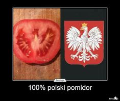 a polish tomato Very Funny Memes, Haha Funny, Funny Cute, Polish Memes, Weekend Humor, Funny Mems, Pokemon, Just Friends, Sarcastic Humor