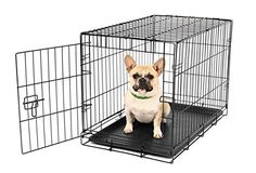 Carlson-Secure-and-Compact-Single-Door-Metal-Dog-Crate-Small
