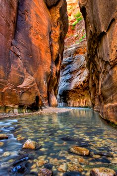 """The narrows at Zion National Park is a hike that takes you through a spectacular gorge  between soaring rock walls carved by the Virgin River. The """"trail"""" is actually the river, but the hike provides unforgettable solitude and views. At times the canyon is 2,000 feet deep and only 20 to 30 feet wide. It is one of my favorite all time hikes!  Learn more from the U.S. Forest Service: http://www.nps.gov/zion/planyourvisit/thenarrows.htm"""