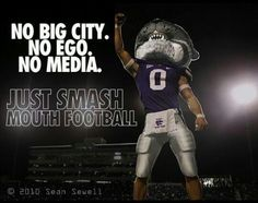 I don't repin a lot of college stuff... but this one is irresistible.  Go Cats!