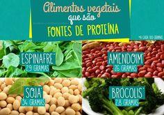 Alimentos Vegetais Fonte de Proteina