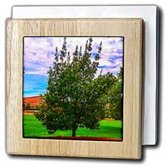 A green tree on lush, green lawn in the summertime Tile Napkin Holder