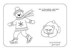 Medveď v zime