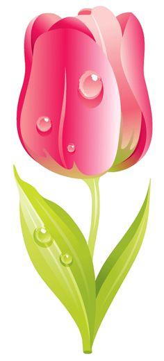 GIF живые капельки Beautiful Flowers Wallpapers, Beautiful Rose Flowers, Flower Crafts, Flower Art, Free Flower Clipart, Tulips Flowers, White Flowers, Flower Phone Wallpaper, Flower Images