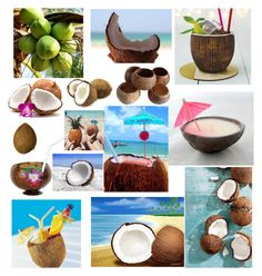 """""""Coconuts"""" by bockadoodledo ❤ liked on Polyvore featuring art"""