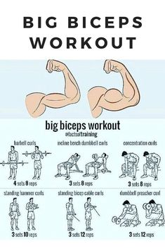 gym workouts for men ~ gym workouts . gym workouts for beginners . gym workouts for men . gym workouts for beginners machines . gym workouts to lose weight machines . gym workouts for glutes Dumbbell Bicep Workout, Big Biceps Workout, Back And Bicep Workout, Bicep And Tricep Workout, Forearm Workout, Shoulder Workout, Bicep Workouts For Men, Best Arm Workouts, Kettlebell