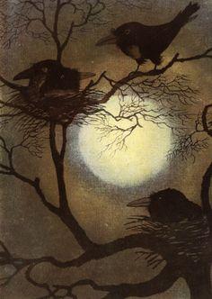 Il·lustracions a la llum de la lluna / Ilustraciones a la luz de la luna / Illustrations in the light of the moon Illustrations, Illustration Art, Blackbird Singing, Quoth The Raven, Raven Art, Wallpaper Aesthetic, Image Nature, Crows Ravens, Harvest Moon