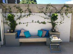 #LimedOak #Composite #Deck #Monochrome #Garden #Design #London #Limed #Hardwood #Horizontal #Screen #Trellis #YorkStone #Coping #Grey #Render#blue #Olive #Hydrangea #Agapanthus #Hidcote #Lavenders #Floating #Bench