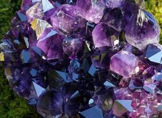 Amethyst has been an important gemstone in the Chinese philosophy of Feng Shui. Feng Shui often involves wearing amethyst bracelets or necklaces to deflect negativity. Crystals Minerals, Rocks And Minerals, Crystals And Gemstones, Stones And Crystals, Healing Crystals, Gem Stones, Amethyst Gemstone, Gemstone Colors, Amethyst Cluster