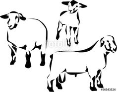 """suffolk sheep"""" Stock image and royalty-free vector files on ..."""