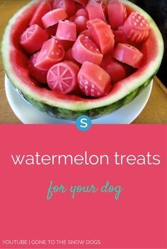 Watermelon treats to make for your dog. http://www.simplemost.com/really-love-dogs-will-make-watermelon-treats?utm_campaign=social-account&utm_source=pinterest&utm_medium=organic&utm_content=pin-description