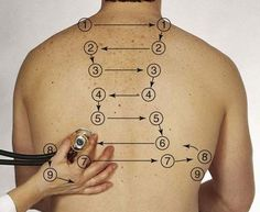 Respiratory assessment - auscultation points