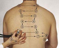 Respiratory assessment - auscultation points