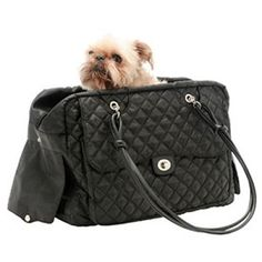The Sassy Pup pet boutique offers luxury pet carriers Pet Flys and Kwigy-Bo Designer Dog Carriers for little dogs. These designer dog bags look. Blue Weimaraner, Small Pet Carrier, Designer Dog Carriers, Dog Purse, Online Pet Supplies, Dog Supplies, Weekend Travel Bag, Pet Carriers, Dog Crate