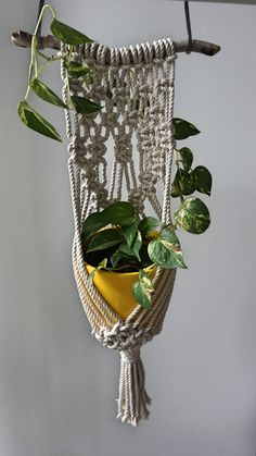 Macrame colgador de pared planta planta de grandes y