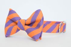 Clemson University Stripe Bowtie Dog Collar