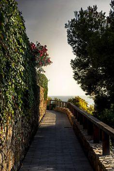 Where will the path go?f14; 1/200s; ISO 100; FL:50mm.© Juan Manuel Saenz de Santa María, 2015
