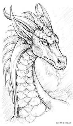 Drawn dragon
