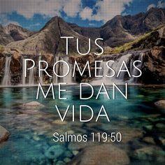 Tus promesas me dan vida (Salmos 119:50)