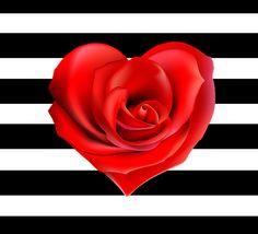 Imagens para imprimir - plano de fundo listrado preto e branco - coração  rosa vermelha- Blog Dikas e diy