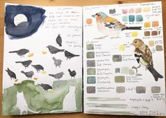 My Sketchbook in January 2019 Nature Sketch, Nature Drawing, Nature Illustration, Floral Illustrations, Nature Editorial, Snowflake Photography, Bird Sketch, Creative Class, Sketches Tutorial