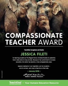 NYC first graders put their compassion into action! #teachkindness #compassionateteacher
