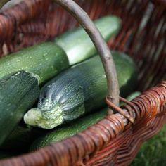 geerntete Zucchini