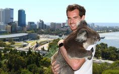 Today: A heat wave in Rio, a tiny baubel and Andy Murray with a koala