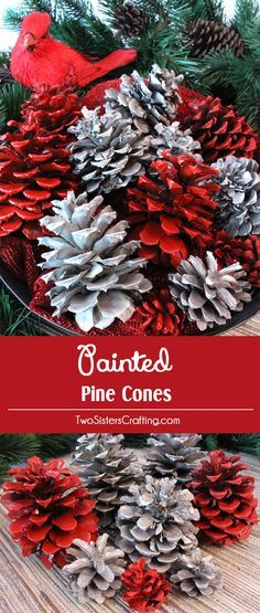 Our Diy Painted Pine Cones Are A Great Christmas Craft That Results In A Gorgeous Christmas Decoration Or A Fabulous One-Of-A-Kind Diy Christmas Gift - Take Your Pine Cones To The Next Level With Our Step-By-Step Instructions. Tail Us For More Fun Chris Silver Christmas Decorations, Diy Christmas Gifts, Christmas Projects, Winter Christmas, Christmas Wreaths, Christmas Ornaments, Christmas Time, Christmas Island, Outdoor Christmas