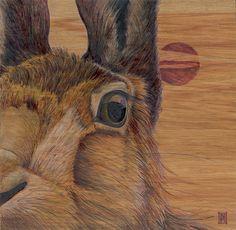 Wild Honey Art - New Zealand Fox Home, Wild Honey, Grey Fox, New Art, New Zealand, Giraffe, My Arts, Artist, Nature
