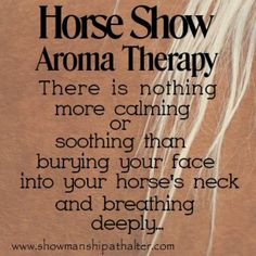 If I could bottle the scent, I would. My favorite scent in the entire world...horses!!