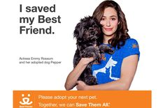 She's a busy actor, but Emmy Rossum still has time to help out with a great cause that champions shelter animals.
