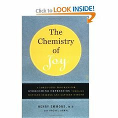 Have you read the Chemistry of Joy by Dr. Henry Emmons? This wonderful book discusses pathways for all who seek to actively improve their emotional lives.    Come hear Dr. Emmons speak at the Not OUR Kids! conference on March 3. Register at http://jfcsmpls.wix.com/notourkids#!