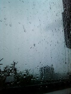 Rain on a window pane.
