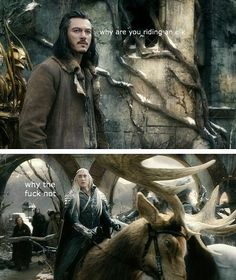Witty exchange between Bard & Thranduil Thranduil Funny, The Hobbit Thranduil, Gandalf, Bard Hobbit, Hobbit Funny, Hobbit Humor, Lotr Elves, Mirkwood Elves, Best Memes