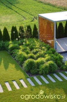 Ogród tworzę nowoczesny czyli wewnętrzna walka jak nie zostać kokoszką :) - strona 886 - Forum ogrodnicze - Ogrodowisko