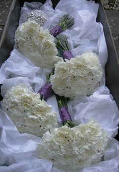 white carnation bouquet - could still mix with cedar. White Carnation Bouquet, Carnation Wedding, Ivory Wedding Flowers, Winter Wedding Flowers, White Wedding Bouquets, Bridesmaid Flowers, Purple Wedding, Bridesmaids, Dream Wedding
