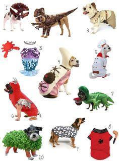 dog costumes!